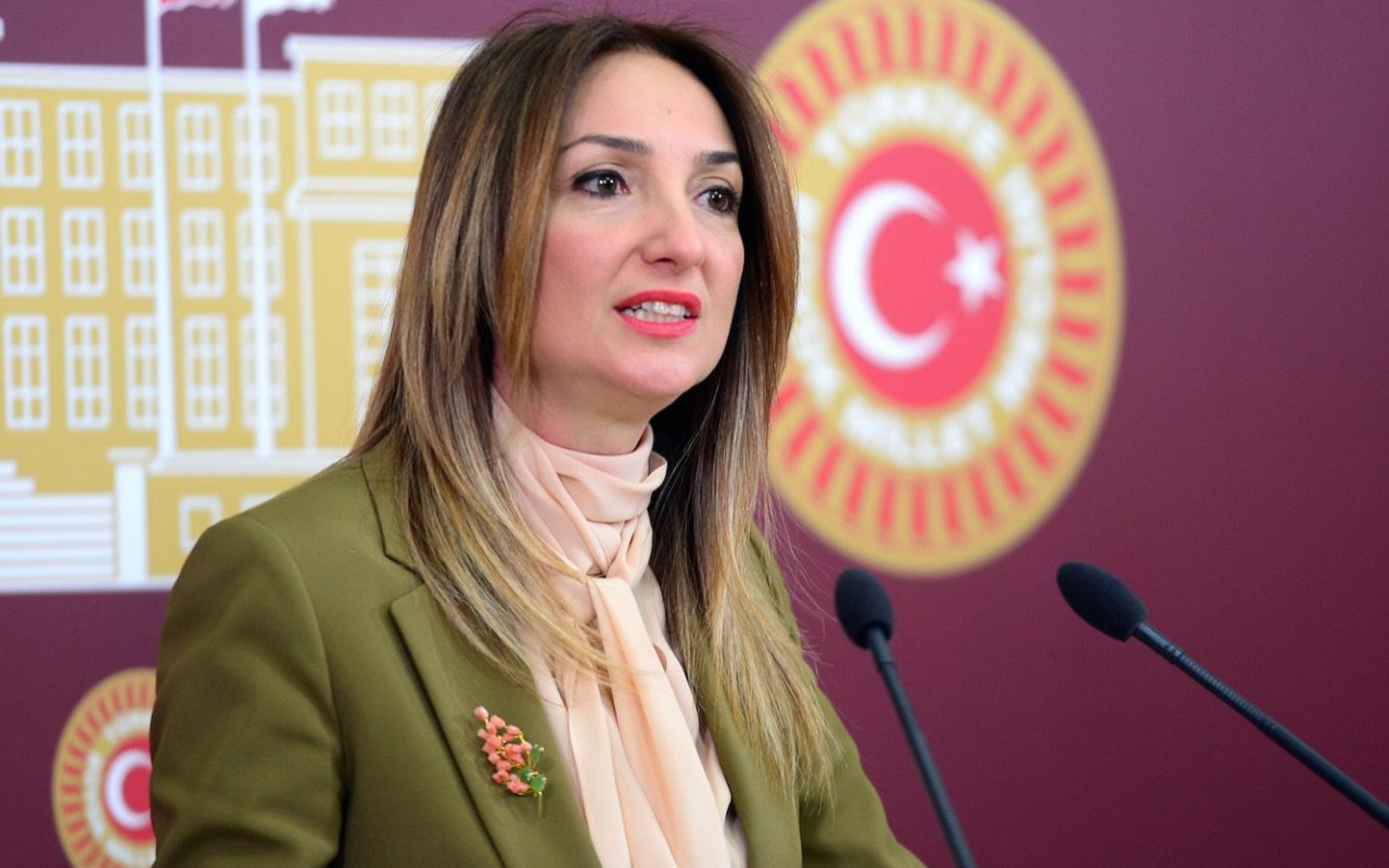 Aylin Nazlıaka'yı CHP'liler bile yalanladı