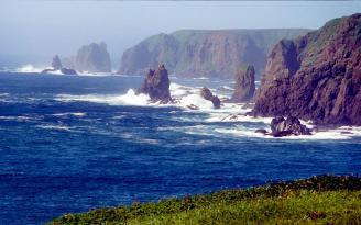 Putin'in Kuril Adaları planı Japonya'yı kızdırdı